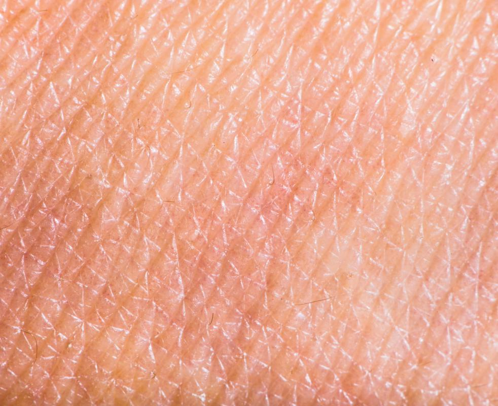 Dermatology is the medical field that focuses on skin health.