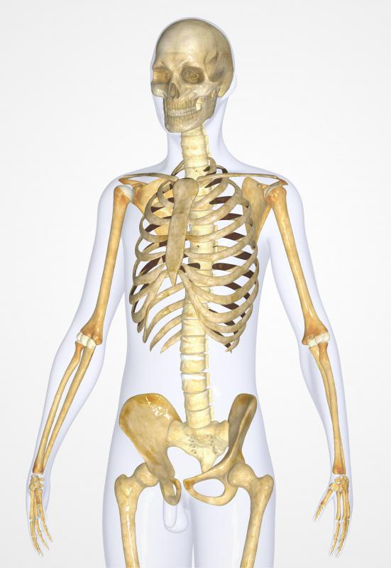 Osteopathy is concerned with the body as a whole.