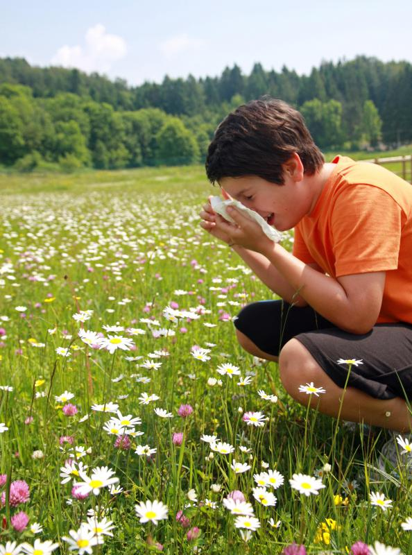 An allergy immunology specialist helps patients to pinpoint the cause of their allergies.