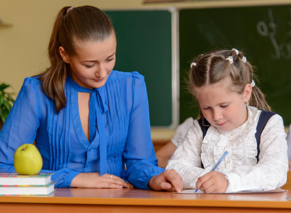 A school teacher may tutor students on an individual basis.